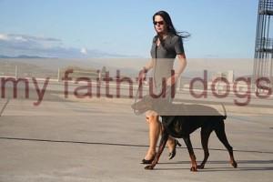 btina-fotos-dogs_text