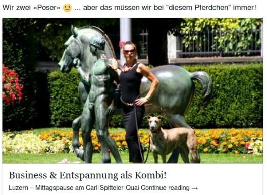 Facebook_Vorschau