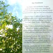 20170912-Der_Nussbaum_Zeidler